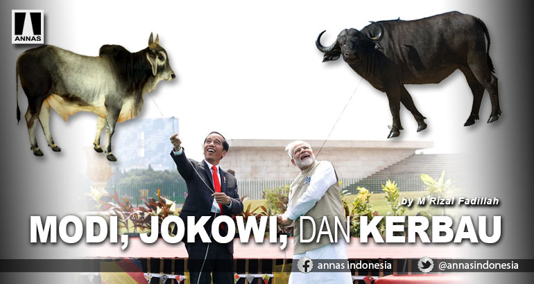MODI, JOKOWI, DAN KERBAU